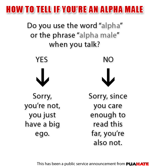 How to tell if you are an alpha male