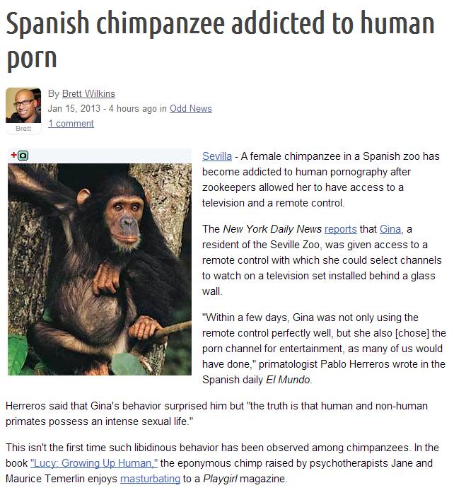 Spanish chimp addicted to porn